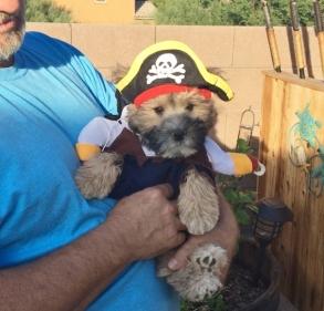 Captain Jack1 (2)